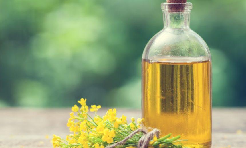 La stabilità all'ossidazione dell'olio di Camelina: lo studio clinico
